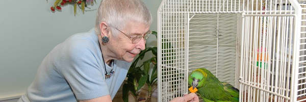 Birchaven Adult day care